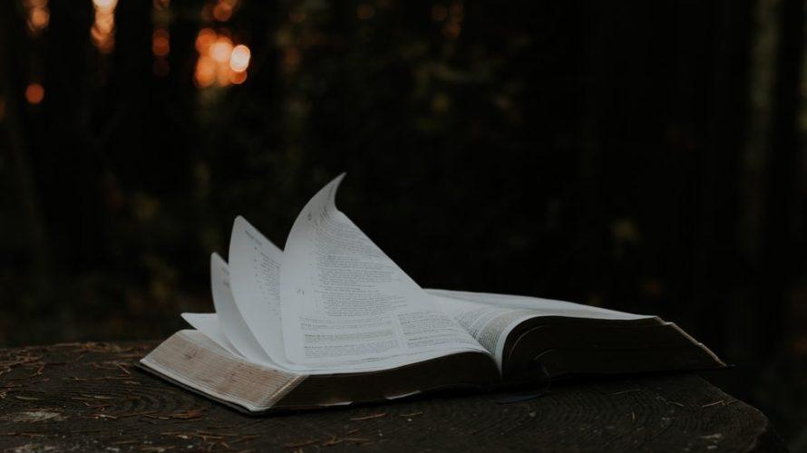 知識に溺れ疲れる人生から、知恵あふれワクワクした人生へ大転換する道