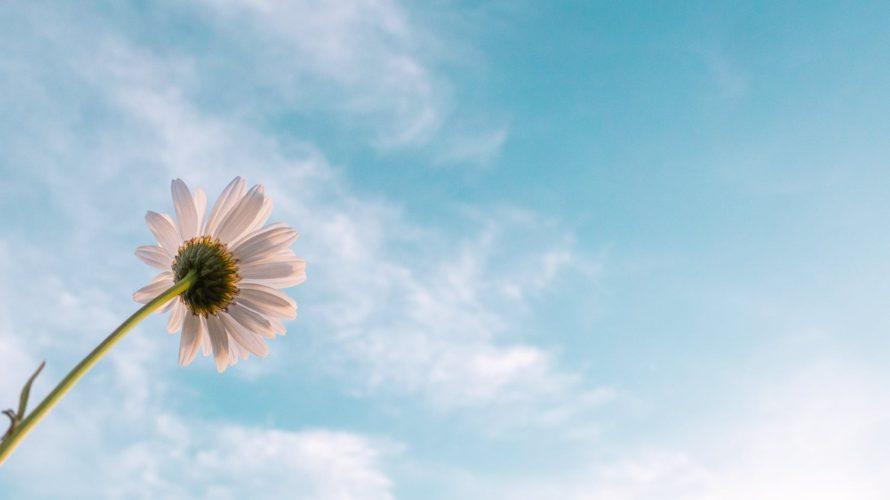 完全な0ベース思考を得る方法〜相手を受け入れる寛容さは知っている世界から自由になることから始まる〜